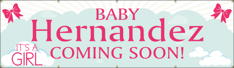 Baby Shower Banner with Sky and Pink Bow design
