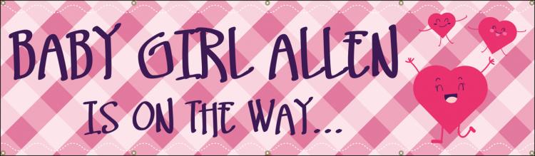 Baby Shower Vinyl Banner with Pink Plaid design